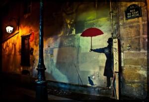 rue_chat_qui_peche